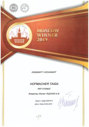 moscow winner, hofmacher taiga, hovawart