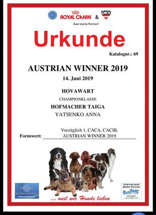 AUSTRIAN WINNER.jpg