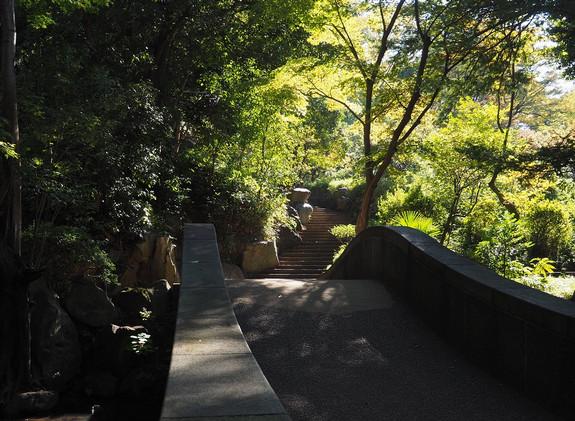 20181103 有栖川公園_3.jpg