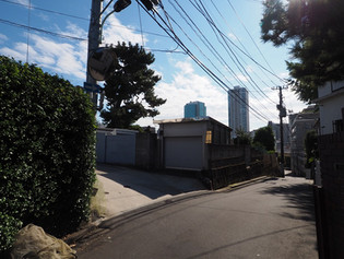 20181103 コスモリード_3.jpg