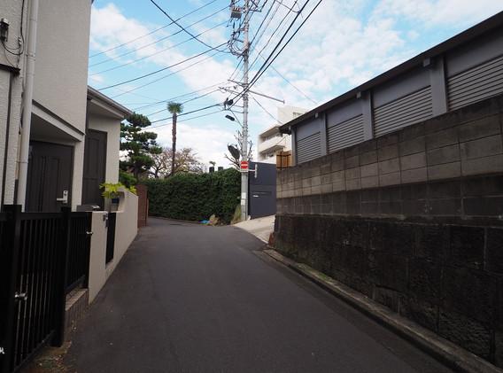 20181103 コスモリード_7.jpg