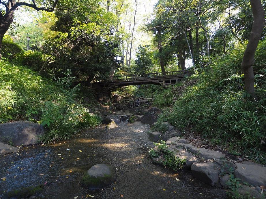 20181103 有栖川公園_6.jpg