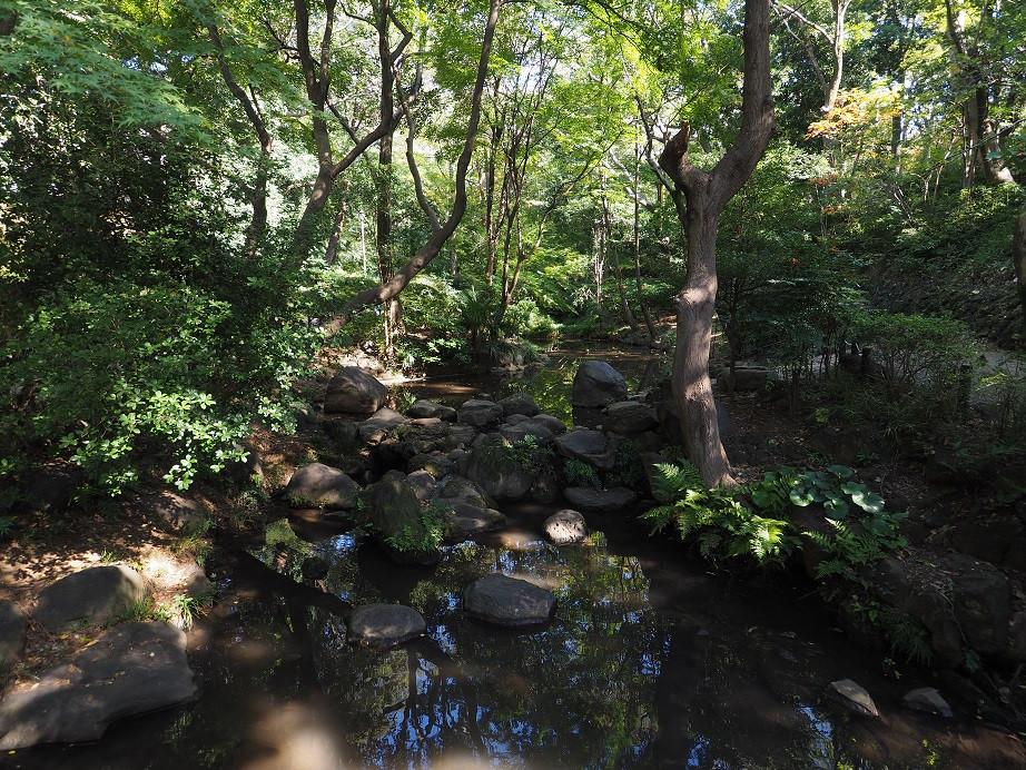 20181103 有栖川公園_4.jpg