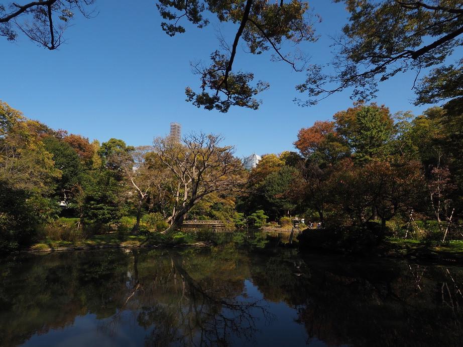 20181103 有栖川公園_15.jpg