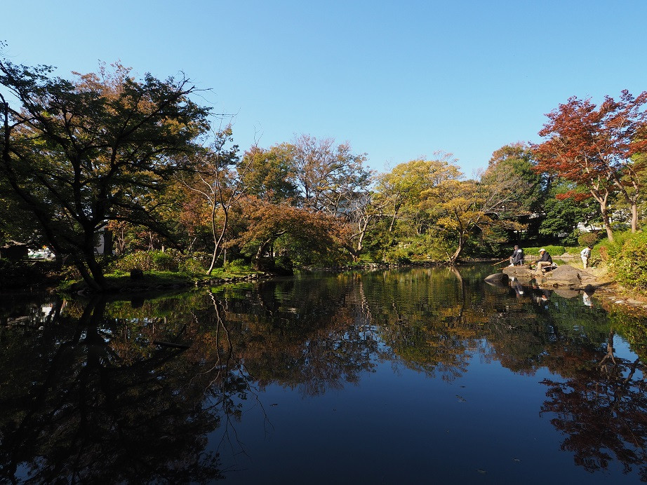 20181103 有栖川公園_7.jpg
