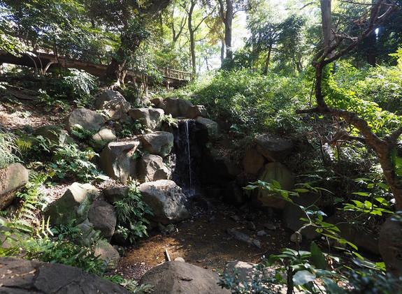 20181103 有栖川公園_1.jpg