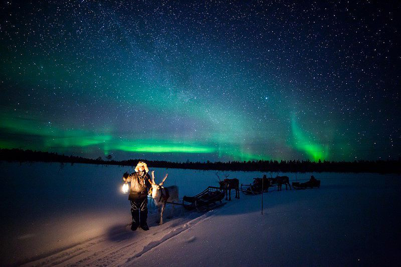 Harriniva/ Torassieppi reineer safari in Lapland