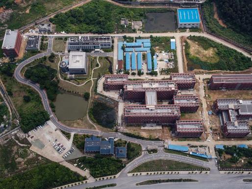 La orden del régimen de Xi Jinping que haría imposible hallar los rastros del origen del coronavirus