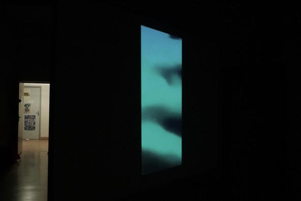 """Hommages Impairs"" 2019 Installation  video-vue de dos"