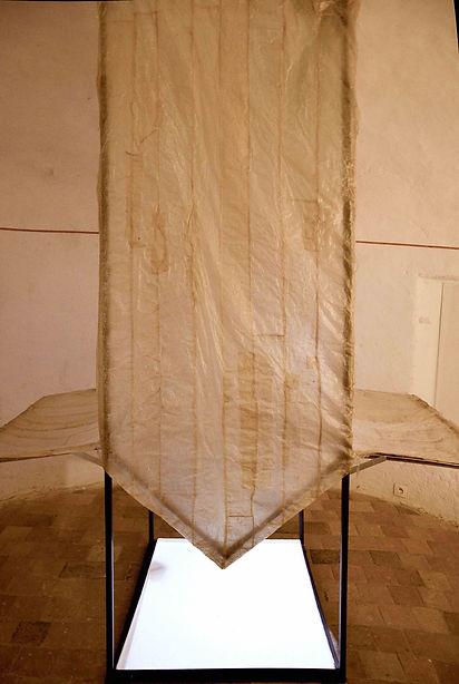 Mue Maison boyaux- fer - vidéo- liquide laiteux- vidéo projecteur- 2m50x0m95x0m75