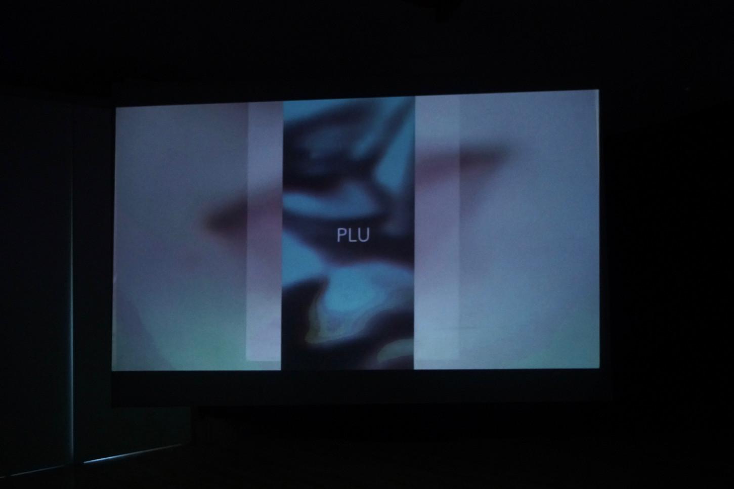 """Hommages Impairs"" 2019 Installation  video-vue de face"