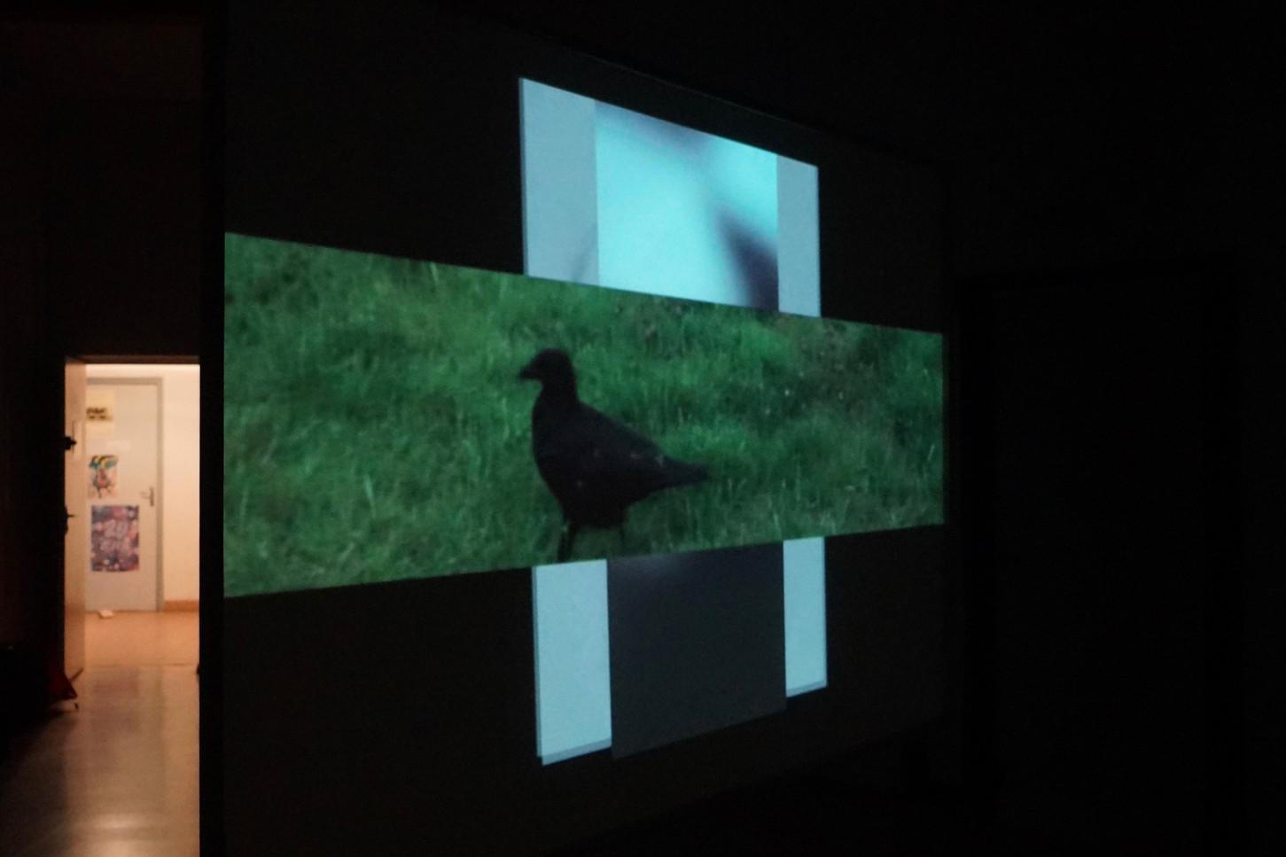 """Hommages Impairs"" 2019 Installation  video- vue de dos"