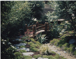 Beautifying a Side Yard, Part I