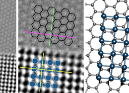 Atomic Structure and Dynamics of Epitaxial Platinum Bilayers on Graphene