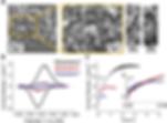 nanoconfined catalysts.png