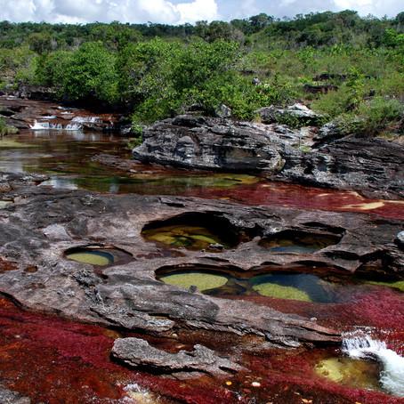 Caño Cristales y su conservación ambiental.