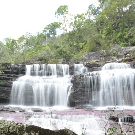 Conoce nuestros planes turísticos y llegada al municipio de La Macarena; Caño Cristales!