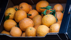More Magical Oranges by Starlite