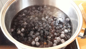 Sloes: Fruit of the Crone by Heather
