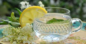 Elder flower Recipes by Sue Perryman