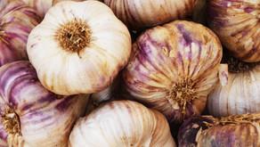 Garlic by Sue Perryman