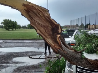 Strong Gusty Winds Cause Damage In Roswell