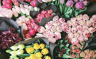 Flores para la venta