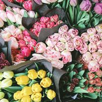 Satılık Çiçekler