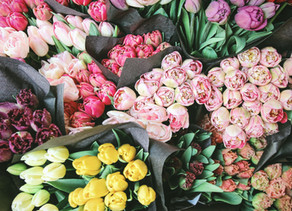 Your flower choices impact your sustainable lifestyle! Discover how