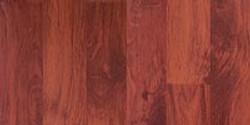 Ольха красная 124