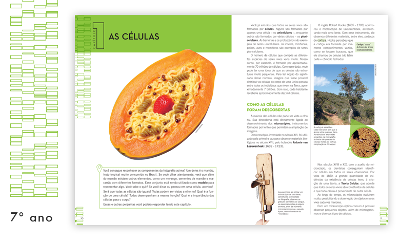 Companhia das Ciências | Saraiva