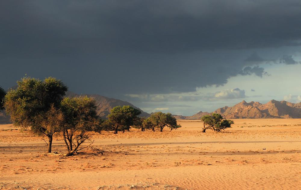 Sandsturm am Rand der Namibwüste