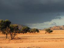 Wüste, Strand und Abenteuer - Roadtrip von Windhoek, Namibia, nach Kapstadt