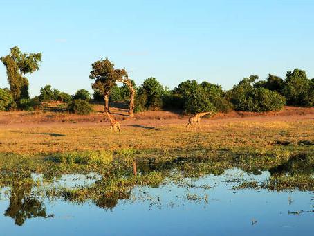 Roadtrip im Südlichen Afrika - Namibia, Botswana, Simbabwe - eine Reise in ein liebenswertes Land