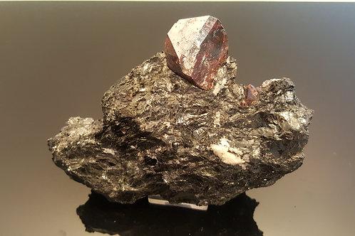 Huge zircon in biotite (broken at backside)
