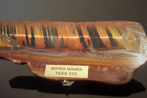 155 mm Marra Mamba Tiger Eye from Pilbara , Western Australia