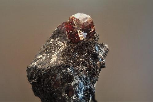 48 mm Zircon in Biotite