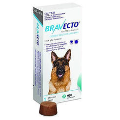 bravecto-large-dog_1024x1024.jpg