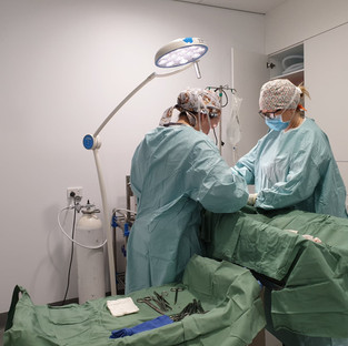 Dr Erica & Dr Kylie in surgery