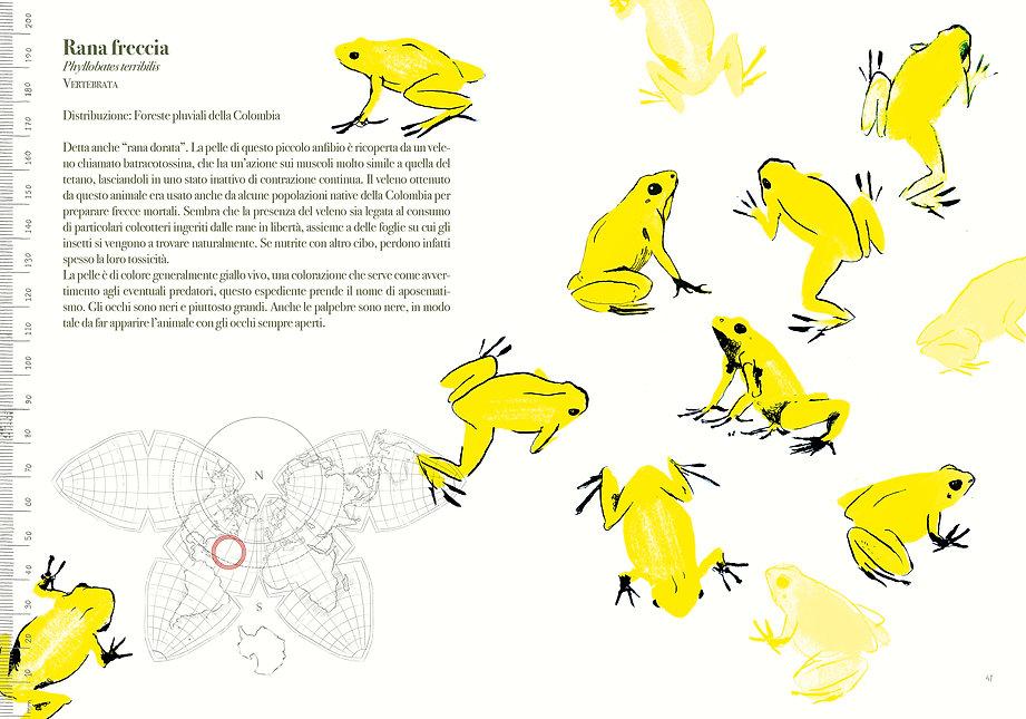 cover-pap14,8x2121.jpg