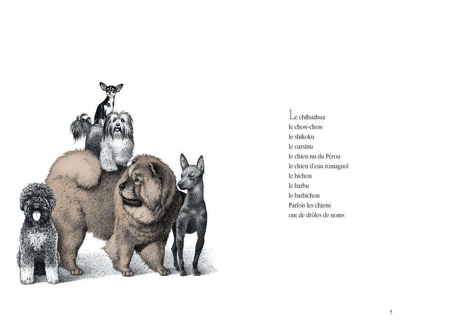 A Dog's Name - Motus - Bonerba.com