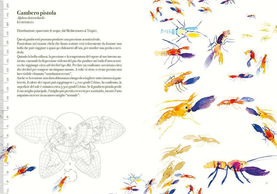 cover-pap14,8x2129.jpg