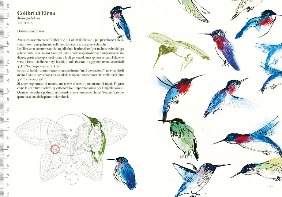 cover-pap14,8x2118.jpg
