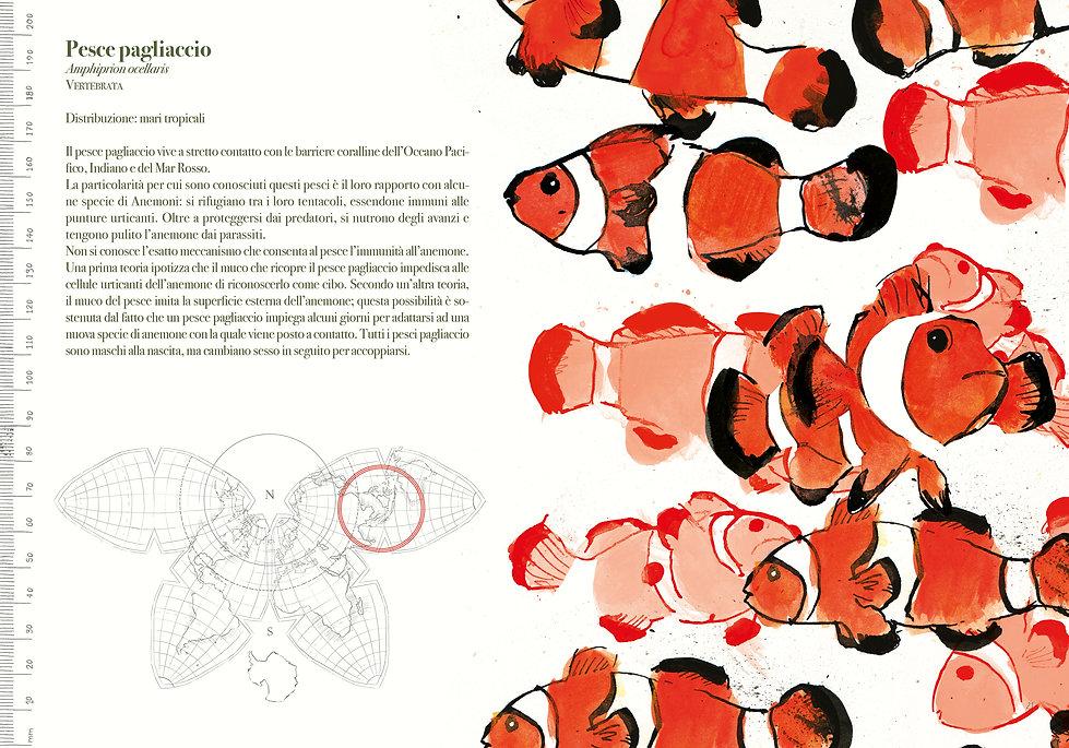 cover-pap14,8x2111.jpg