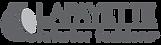 2013lif_logo_grey_578x142.png