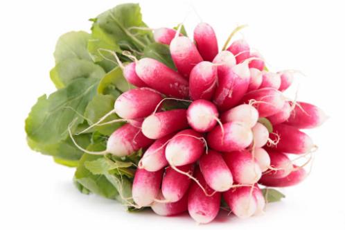 Botte de radis rose Bio et locale du 91