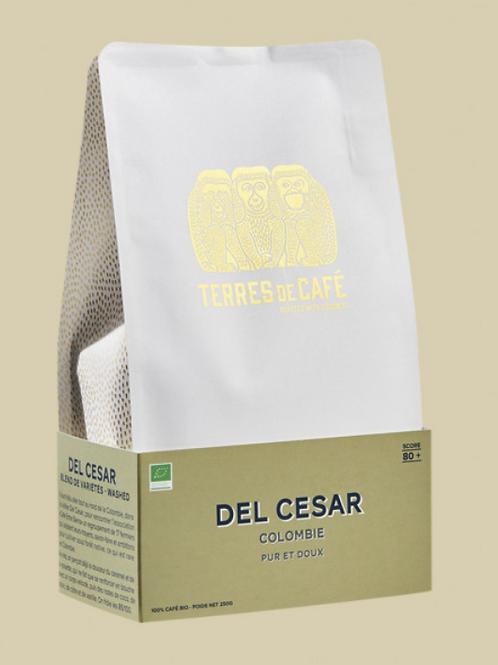 Del Cesar Bio