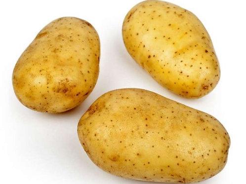 Pomme de terre - Bintje - Pour les frites !