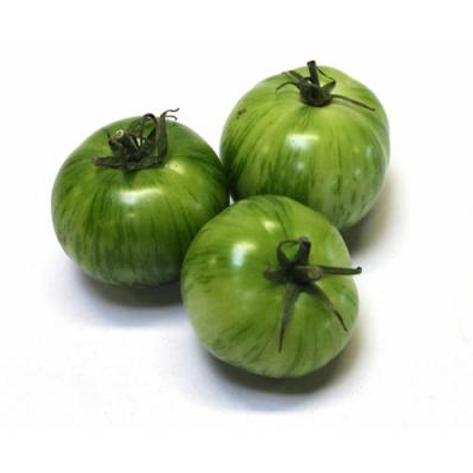 Tomate Green Zébra bio