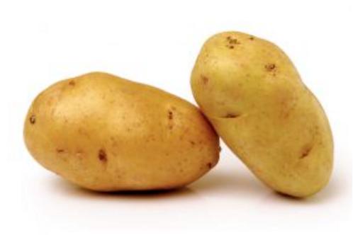 Pomme de terre Bio - Nicola